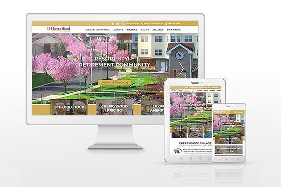 Echo Creative Website Development